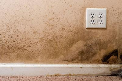 humedad en las paredes como quitarla