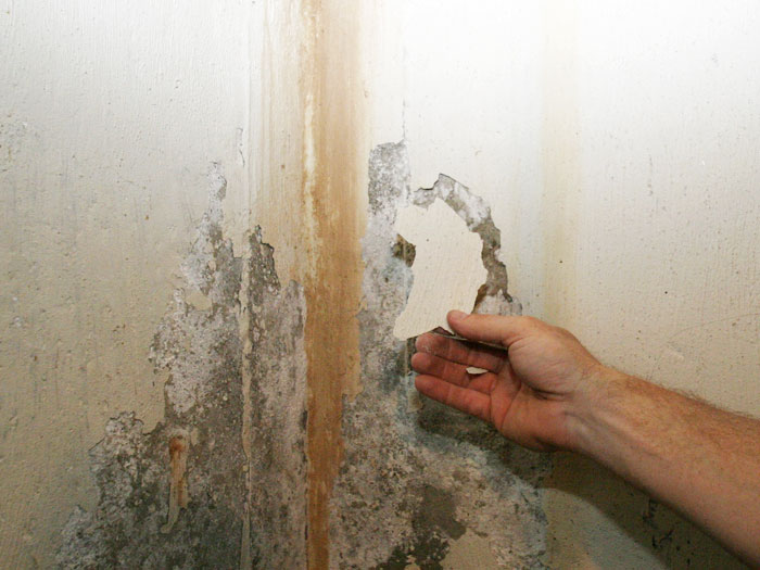 humedad en paredes interiores solucion